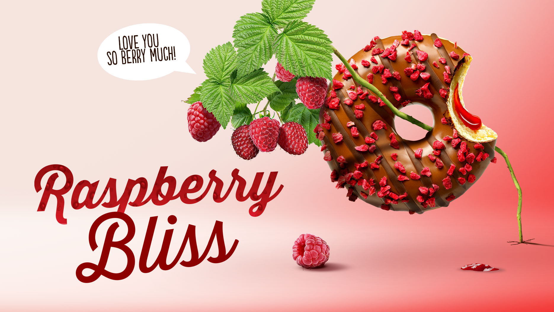 DNWBH-product-detail-top-of-bites-raspberry-bliss.jpg